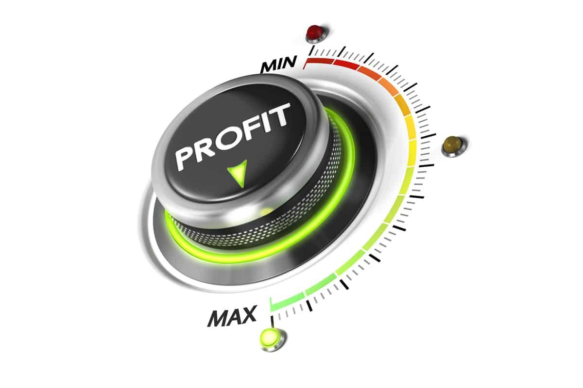 Profit-Maximierung